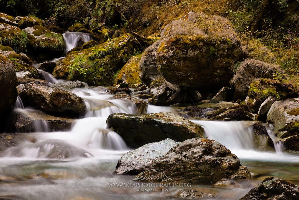 Sugar Loaf Stream, Routeburn, New Zealand