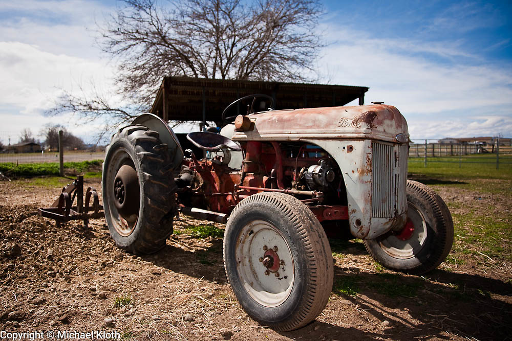 Old Ford Farm Tractors : Old ford tractor sitting in horse pasture at the spot o