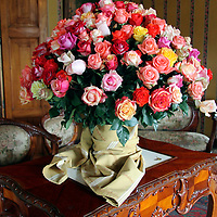 South America, Ecuador, Cayambe. Rose bouquet at Hacienda Compania.