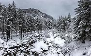 Beli Iskar at winter time