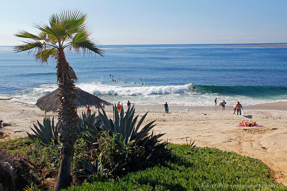 USA, California, San Diego. Windansea Beach in La Jolla.