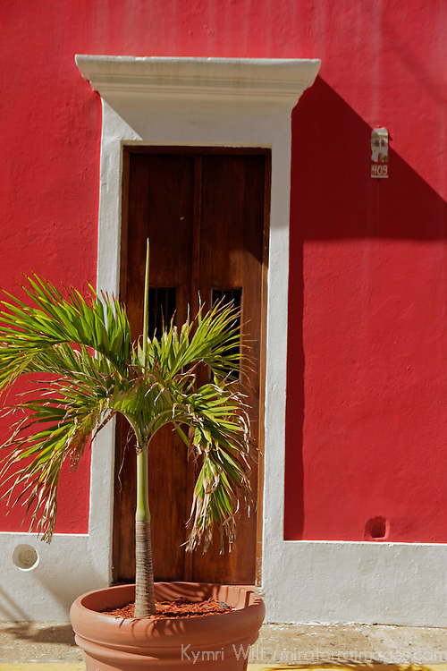 USA, Puerto Rico, San Juan. Plant and Doorway of Old San Juan, Puerto Rico.