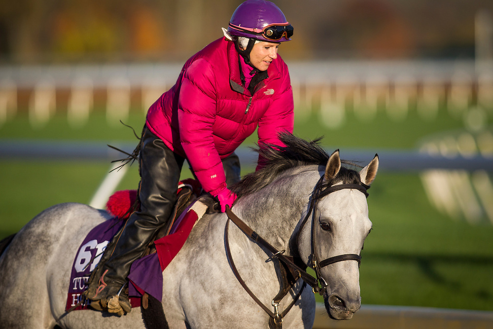 October 29, 2015:  Holy Lute, trained by James M. Cassidy and owned by Class Racing Stable, exercises in preparation for the Breeders' Cup Sprint at Keeneland Race Track in Lexington, Kentucky. Alex Evers/ESW/CSM