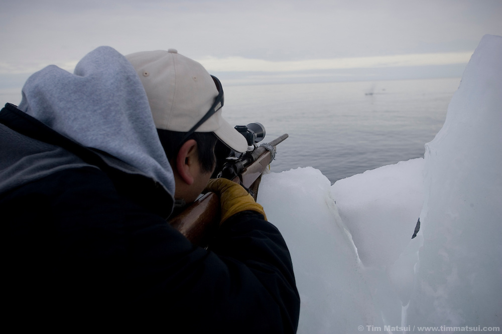 May 3, 2008 -- Kivalina, AK, U.S.A..Richard Sage shoots a seal from whaling camp on the pack ice, some two miles from shore and 12 miles from the native village of Kivalina, Alaska. Kivalina is suing 20 oil companies for property damage related to global warming; the ocean pack ice forms later and melts earlier, leaving the town vulnerable to erosive winter storms and endangering their traditional subsistence lifestyle. (Photo by Tim Matsui)