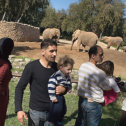 Israeli soccer star Abbas Suan, holds his son Mohammad, 2, in front of the elephant exhibit during an outing to the zoo with family members, Ramat Gan, Israel, Jan. 31, 2006. Suan, an Israeli-Arab, still faces criticism and racism resulting from the unsettled conflict between the Israelis and Palestinians.