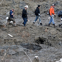 A line of rescue workers arrives to look for victims in the mudslide near Oso, Washington as efforts continued to find victims March 26, 2014. The death toll from a massive landslide in Washington state stood at 24 on Wednesday, but the mud-stricken community braced for a higher body count as search teams combed through debris looking for scores of people still missing four days after the disaster. REUTERS/Rick Wilking(UNITED STATES)