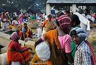 22/12/08 - NELLIKUPPAAN - TAMIL NADU - INDE - Marche de NELLIKUPPAAN - Photo Jerome CHABANNE