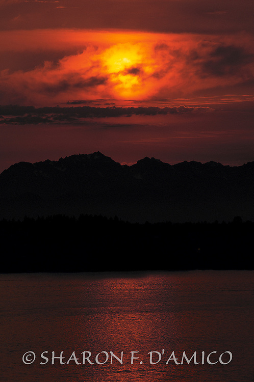 SUNSET OVER LAKE WASHINGTON 7570.JPG  Limited Edition Print  A Summer Sun Sets over the Lake and Olympic Mountains
