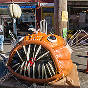 A giant pumpkin fish with sharp teeth lures visitors to the Pumpkin Fest in Damariscotta, Lincoln County, Maine, USA