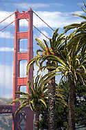 View of the Golden Gate Bridge with Palm trees from the Presidio in San Francisco