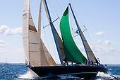 2012 Newport Bermuda Cetacea