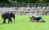 Zoo & Animals