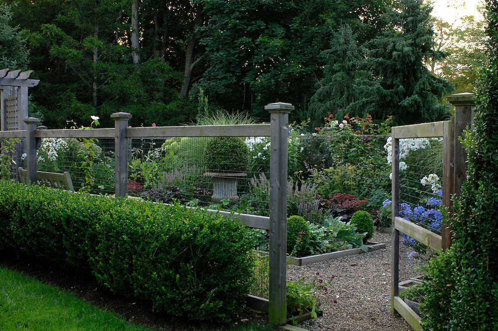 Perennial Garden with Boxwood Hedge