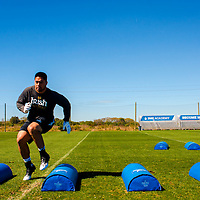 2/18/13 11:26:38 AM -- Bradenton, FL, U.S.A. -- NFL prospect and Notre Dame linebacker Manti Te'o works out at IMG Academy in Bradenton, Fla., in preparation for this year's NFL Combine.  -- ...Photo by Chip J Litherland, Freelance