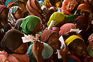 Women wave their ration cards in effort to get a bag of flour during a food distribution in Iridimi refugee camp near Iriba, in eastern Chad.