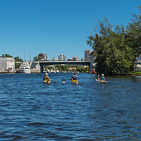 Three kayakers paddle towards downtown Miami on a beautiful day on the Miami River.