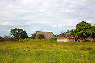A farm on the north coast of Pinar del Rio, Cuba. The foreground is pasture with a charcoal pile, wagons, and a thatch roofed barn and house behind.