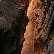 "The Canyon walls glow in The Narrows of Zion National Park, Utah. This section of The Narrows is commonly known as ""Wall Street"" where the walls are at their closest. This unique hike uses the Virgin River as the actual trail."
