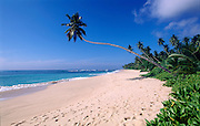 Mirissa beach in the South of the island.