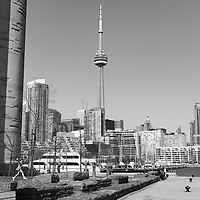 http://Duncan.co/girl-jumping-and-cn-tower