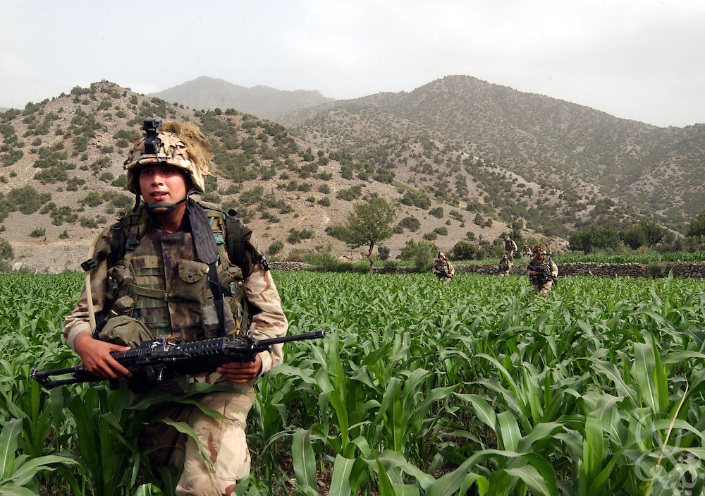 "US Army 101st Airborne 3-187 ""Bravo"" company infantry cross a corn field while conducting a 23 July, 2002 sensitive site exploitation (SSE) mission in the town of Narizah in Southeastern Afghanistan . The three day mission, intended to deny sanctuary to Al Qaida and Taliban fighters in villages along the Pakistan-Afghanistan border resulted in the recovery of several weapons caches and one Afghan detained for questioning."