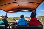 Brazil; Mato Grosso; Pantanal; Tourists; Vehicle
