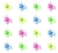 Flower collage - colors