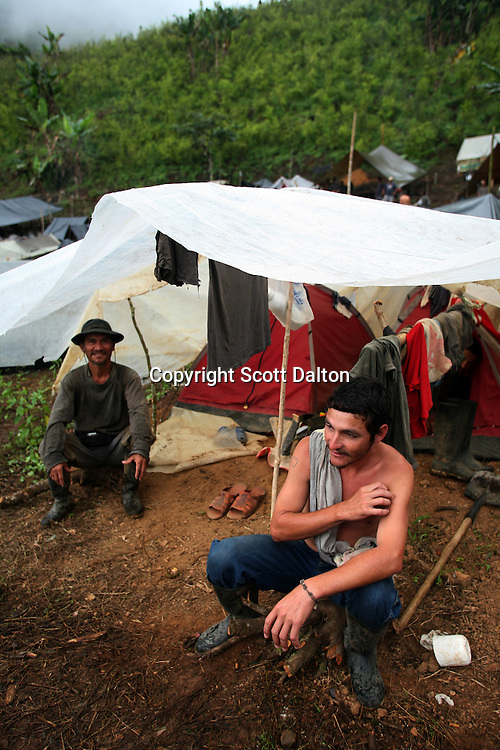 Workers hired by the Colombian government to manually eradicate coca crops rest in their camp, next to a coca field, after a long day of work, in El Campanario, in a remote area of the southern Colombian state of Nariño, on Thursday, June 21, 2007. (Photo/Scott Dalton)