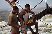 Fishermen remove a huge carp from one of their baskets, at Wagenia Falls, in the middle of the Congo River, DR Congo.