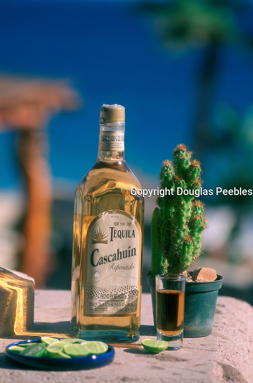 Tequila, Cabo San Lucas, Baja California, Mexico<br />