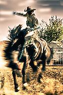 Saddle bronc rider, cowboy, abstract