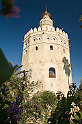 Sevilla Spain Andalucia Golden Tower Mauretanian relic photo Piotr Gesicki