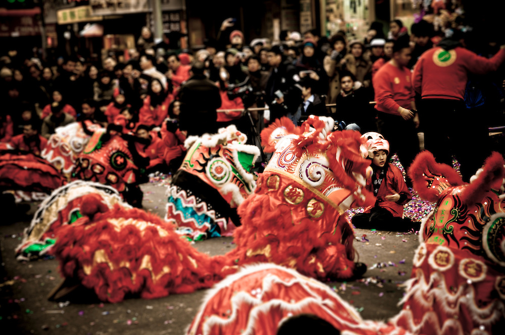Lion dance leagues and clubs perform in front of shops throughout Chinatown to bring in good luck for the Chinese New Year, the Year of the Rabbit, New York, 2011.