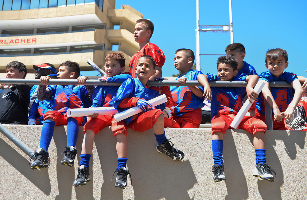 mkb042217f/metro/Marla Brose --  The West Mesa Mustangs, a team of 6 and 7-years-olds  watches the University of New Mexico football's Spring Showcase, the final workout of the spring. The practice was followed by a kids's clinic in University Stadium in Albuquerque, N.M., Saturday, April 22, 2017. (Marla Brose/Albuquerque Journal)