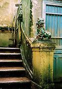 Ceramic dragon guarding an entrance