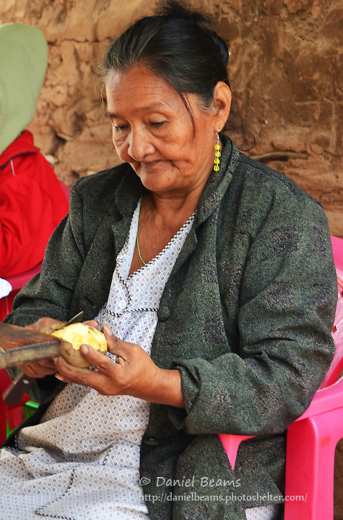 Guarani woman cooking