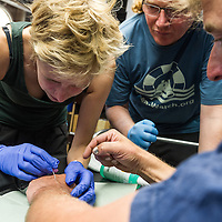 15 Sea-Watch Medical Training