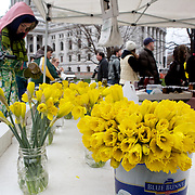 First Farmers Market of the 2011 seaon on the Capitol Square in Madison, Wisconsin.