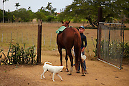 Horse and wagon in Playa La Altura, Pinar del Rio, Cuba.