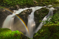 Rainbow hanging over Sol Duc Falls, Olympic National Park, WA, USA