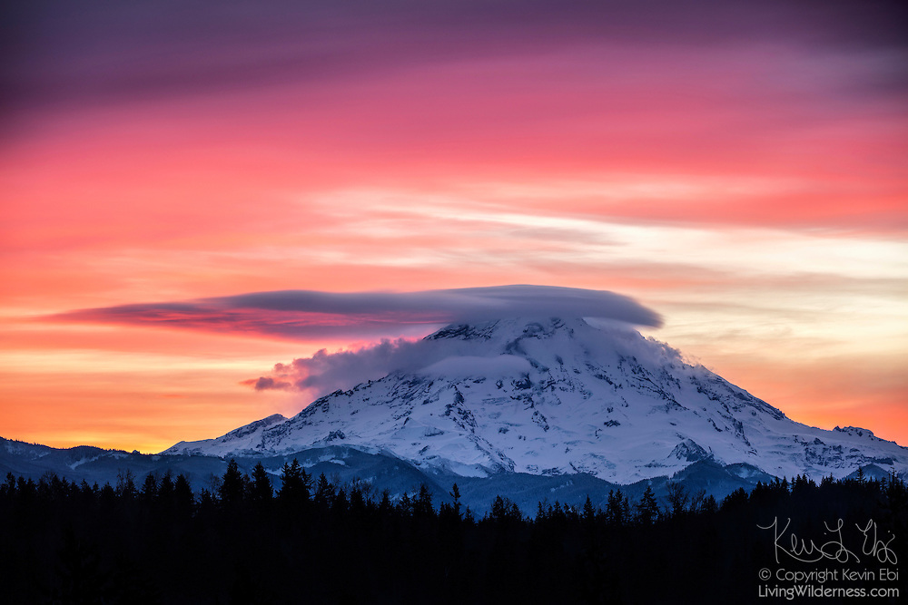 A lenticular cloud caps the summit of Mount Rainier at sunrise in this view from Bonney Lake, Washington. Lenticular clouds form when moist air is forced up and over mountains or other large obstructions. Higher, cirrostratus turn red in the first light of day. Mount Rainier, the highest peak in Washington state and the tallest volcano in the Cascade Mountain Range, has a summit elevation of 14,411 feet (4,392 meters).
