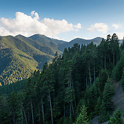 The steepness of the mountains and the density of the forest can be seen here, in Olympic National Park. It took almost a year for the first explorers to traverse to park, and it must have been a very difficult<br />  expedition. In the distance you can see non-stop drainages, up and down over and over.