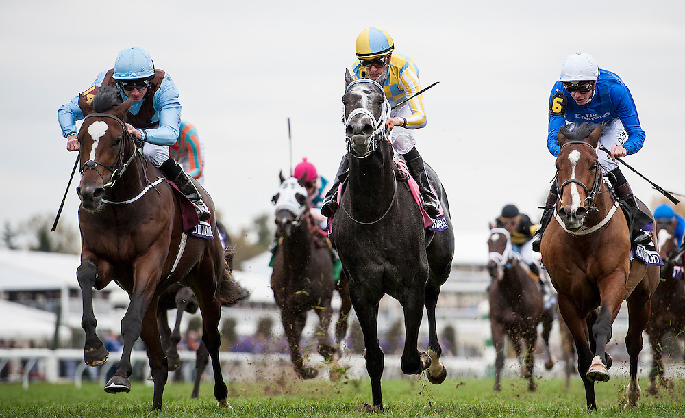 October 30, 2015:  Hit It A Bomb with Ryan Moore (left) defeats Airoforce  with Julien Leparoux (middle) and Birchwood with James Doyle to win the Breeders' Cup Juvenile Turf at Keeneland Race Track in Lexington, Kentucky. Evers/ESW/CSM