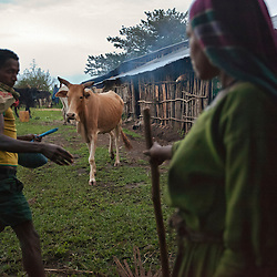 Thirteen-year-old Destaye and her husband Addisu, 25, care for their home and crops near Bahir Dar, Ethiopia on  Aug. 17, 2010. Destaye and Addisu were married in a traditional Ethiopian Orthodox wedding ceremony in the rural area outside Bahir Dar. Community members say that Destaye was married to Addisu at such a young age because, as a priest, it was necessary his bride be a virgin.