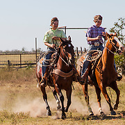 Colby and Brady McDonald riding Tigger and the bay mare at Warren Ranch at Katy Prairie Conservancy; Katy; Texas