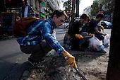 """Green Bird"" -  volunteers cleaning the streets of Paris."