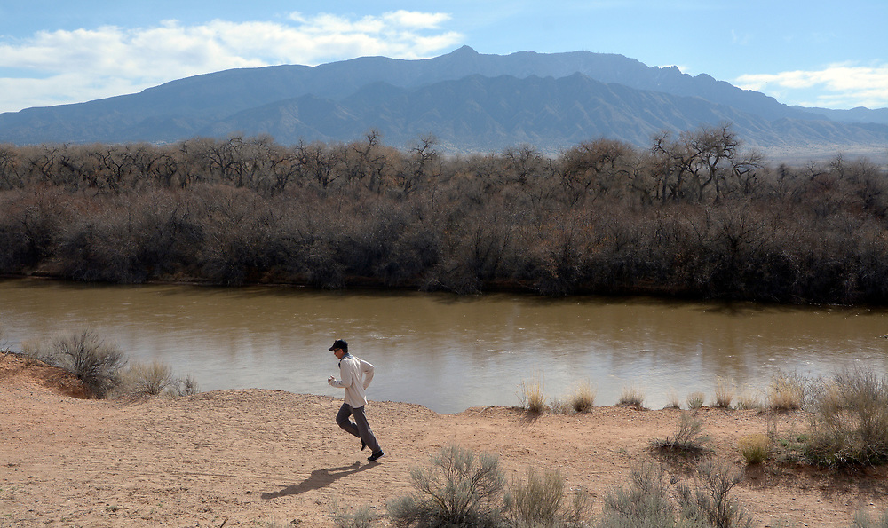 gbs030517a/GO -- Alan Carson of Rio Rancho runs by the Rio Grande along the bosque trail where improvements to the trail are proposed for a 3/4 mile stretch near North Beach. (Greg Sorber/Albuquerque Journal)