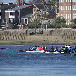 2017 Veteran's Head of the River Race