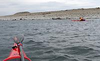 "Kayaking outside Mølen - mann padler forbi Mølen....Mølen is Norway's largest beach of rolling stones, and is a part of Vestfoldraet: the terrain left behind after the end of the most recent Ice age around 10,000 years ago.....The wind and sea have lashed the landscape of Mølen for thousands of years, and the place takes its name from the Old Norse word ""mol"", meaning a stone mound or bank of stones.....Mølen i Larvik i Vestfold er del av en endemorene fra istiden, det store raet som strekker seg fra Finland gjennom Sverige og langs norskekysten helt til Kolahalvøya. Nordøstover fra Mølen går raet i havet, deretter over Brunlaneshalvøya og Farriseidet. Første oversjøiske punkt i sørvest er Jomfruland utenfor Kragerø.....Stedsnavnet kommer av gammelnorsk mol, «steinvoll» eller «steinbanke», jamfør nynorsk mòl, «banke el. øyr av småstein i strandkanten»....."