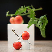tomato series, tomato, tomatoes, garden blessings, tomato photographs, tomato art, tomato images, Shelley Lipton